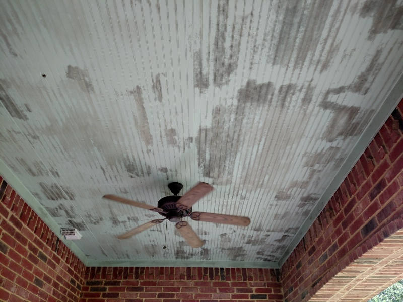 Expert Soft Wash Mold Removal 100 Streak Free Concrete Cleaning Stucco Driveway Pressure Washing